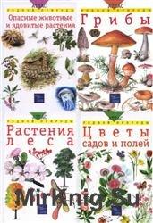 Атлас родной природы. Сборник (11 книг)