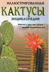 Кактусы. Иллюстрированная энциклопедия