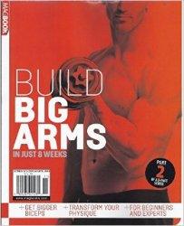 Build Big Arms in Just 8 Weeks