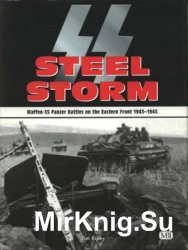 Steel Storm: Waffen-SS Panzer Battles on the Eastern Front 1943-1945