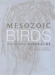 Mesozoic Birds: Above the Heads of Dinosaurs