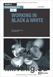 Basics Photography 06: Working in Black & White