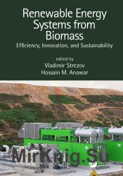 Renewable Energy Systems from Biomass: Efficiency, Innovation, and Sustainability