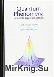 Quantum Phenomena in Simple Optical Systems