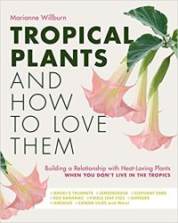 Tropical Plants and How to Love Them: Building a relationship with heat-loving plants when you don't live in the tropics