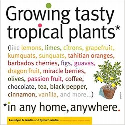 Growing Tasty Tropical Plants in Any Home Anywhere