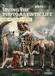 Living the Photo Artistic Life Issue 75 2021