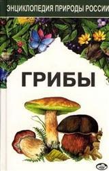 Грибы. Энциклопедия природы России