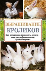 Выращивание кроликов. Как содержать, разводить, лечить – советы профессиона ...