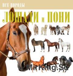 Лошади и пони. Все породы