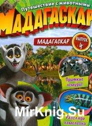 Мадагаскар. Путешествие с животными №4