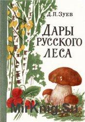 Дары русского леса