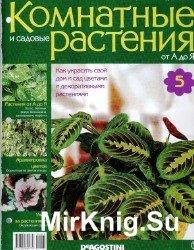 Комнатные и садовые растения от А до Я №5, 2014