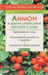 Лимон и другие цитрусовые растения в доме