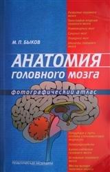 Анатомия головного мозга. Фотографический атлас