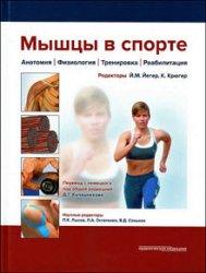 Мышцы в спорте. Анатомия. Физиология. Тренировка. Реабилитация