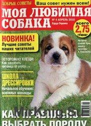 Моя любимая собака №4, 2010