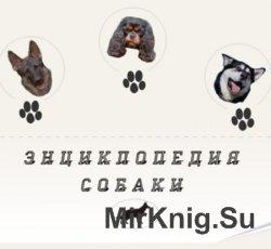 Собаки. Мультимедийная энциклопедия