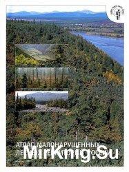 Атлас малонарушенных лесных территорий России