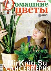 Домашние цветы № 2, 2009