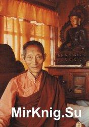 Светоносный ум: Путь Будды
