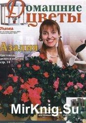 Домашние цветы № 1, 2008