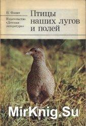 Птицы наших лугов и полей
