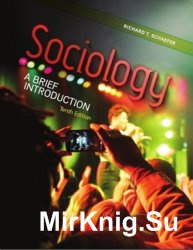 Sociology: A Brief Introduction (10th edition)