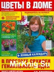 Цветы в доме № 6, 2014  | Украина