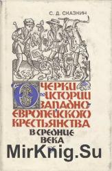 Очерки по истории западноевропейского крестьянства в Средние Века