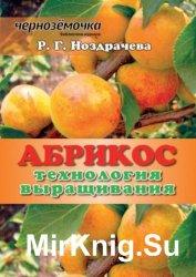 Абрикос. Технология выращивания