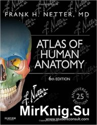 Netter's Atlas of Human Anatomy, 6th Edition