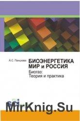 Биоэнергетика. Мир и Россия. Биогаз: Теория и практика