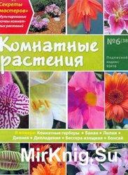 Комнатные растения № 6 (38)