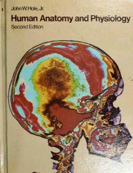 Human Anatomy and Physiology [2nd Edition]