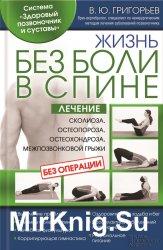 Жизнь без боли в спине. Лечение сколиоза, остеопороза, остеохондроза, межпо ...