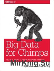Big Data for Chimps (+code)