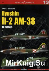 Ilyushin Il-2 AM-38: All models (Kagero Topdrawings 13)
