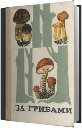 За грибами