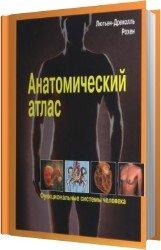 Анатомический атлас. Функциональные системы человека