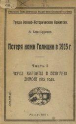 Потеря нами Галиции часть 1 - Через карпаты в Венгрию зимою 1915 года.