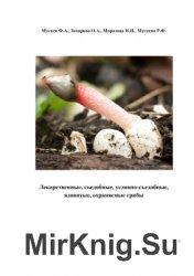 Лекарственные, съедобные, условно-съедобные, ядовитые, охраняемые грибы