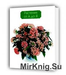 Растения от А до Я