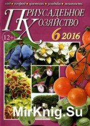 Приусадебное хозяйство №6 2016 + приложения