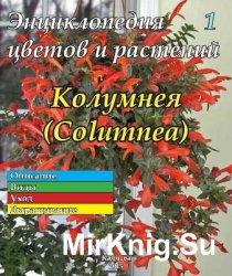 Энциклопедия цветов и растений № 1 (2015) Колумнея