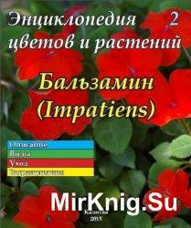 Энциклопедия цветов и растений № 2 (2015) Бальзамин
