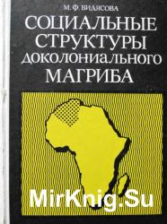 Социальные структуры доколониального Магриба. Генезис и типология