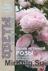 Цветы в саду и дома №4 2016