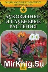 Луковичные и клубневые растения