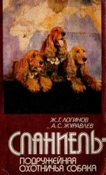 Спаниель - подружейная охотничья собака